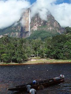 selva guayanesa imagenes - Buscar con Google
