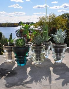 DIY – Cool and Creative Planters made from antique glass insulators!