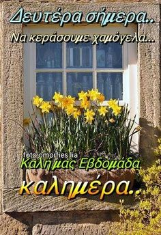 Good Morning Good Night, Greek Quotes, Spirituality, Inspirational Quotes, Inspire Quotes, Sayings, Pictures, Life Coach Quotes, Life Inspirational Quotes
