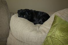 Wilsons and Pugs: Studio Wall Easel Diy Picture Rail, Ikea Frames, Easel, Pottery Barn, Pugs, Display, Rustic, Studio, Pictures