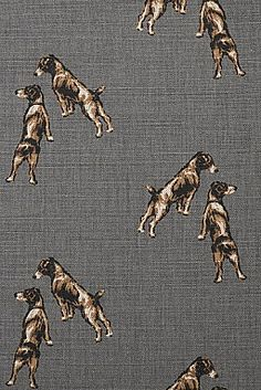 Wire Haired Jack Russell Fabric