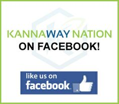 A Movement with a Pay Plan Kannaway  #Kannaway is a hemp lifestyle company with a focus on #nutritional #wellness whose products contain #CBD rich #hemp oil.