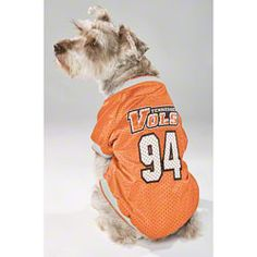Tennessee Volunteers Dog Jersey $19.99 http://www.fansedge.com/Tennessee-Volunteers-Dog-Jersey-_1406087243_PD.html?social=pinterest_pfid50-12790