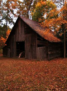 Barn In The Country Fall