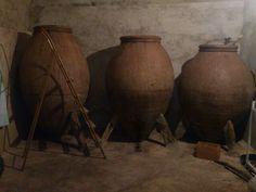 Tinajas de vino Vides, Vitis Vinifera, Red Wine, Antiques, Decor, Shrubs, Gold, Antiquities, Antique