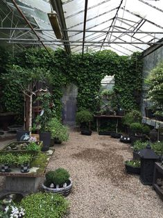 Purple Area has the dreamiest greenhouse!