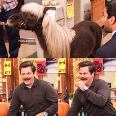 Parks and Recreation -- Ron's reaction to seeing L'il Sebastian Best Tv Shows, Best Shows Ever, Favorite Tv Shows, Parks And Rec Memes, Parks And Recreation, Parcs And Rec, Lil Sebastian, Parks Department, Candle In The Wind