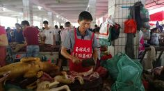 Pictures: China's annual dog meat festival #China, #Director, #Slaughtered, #Yulin, #YulinChina