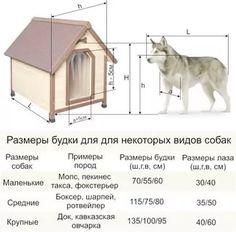 креслення будки для собаки: 14 тыс изображений найдено в Яндекс.Картинках