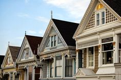 painted-ladies-4