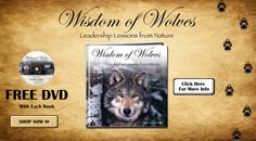 The Wisdom of Wolves Movie