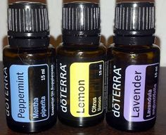 A new blog about essential oils.