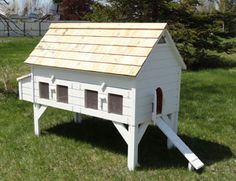 Extended Alexandria Plus (The Green Chicken Coop) I really like this one with an extra nest box and a run.