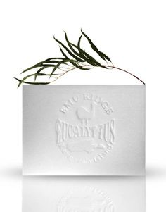 Eucalyptus Soap – White This Eucalyptus Body Soap contains all natural Vegetable Oil. The rectangular soap is fragranced with beautiful Eucalyptus Oil. $2.50