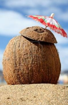 Many people want to incorporate coconut oil into their diets but are unsure about how to do so. This article includes tips for cooking with coconut oil as well as consuming relatively large quantities of it as a nutritional supplement. Coconut Oil For Teeth, Cooking With Coconut Oil, Coconut Oil Uses, Organic Coconut Oil, Cooking Oil, Organic Oils, Coconut Oil Coffee Benefits, Coconut Drinks, Coconut Rum