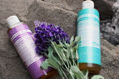 Dr. Bronner And His Amazing Life – Here Are Some Things You May Not Have Known