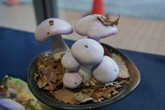 きのこ盆栽 ムラサキシメジ - 可愛いきのこの写真館 Stuffed Mushrooms, Vegetables, Breakfast, Food, Stuff Mushrooms, Morning Coffee, Essen, Vegetable Recipes, Meals