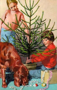 Vintage Ladybird Books 'Look at This' - this looks like the trees you would bring home to put in the basement at Christmas!