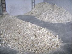 Bone Ash at Best Price in Loni, Uttar Pradesh