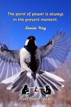 The point of power is always in the present moment. Louise Hay. Psychic Phone Reading 18779877792 #psychic #love #follow #nature #beautiful #meetyourpsychic https://meetyourpsychic.com/welcome1