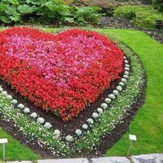. Flower Garden Design, Garden Landscape Design, Topiary Garden, Garden Art, Amazing Gardens, Beautiful Gardens, Sacred Garden, Montreal Botanical Garden, Miracle Garden