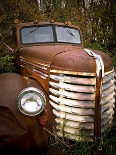 Old abandoned cars.
