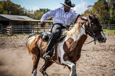 African American cowboy Gus Trent was an inner city kid.  After tours in Iraq and Afghanistan, Gus Trent found a  second career on the rodeo circuit.