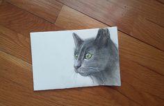 Gatto nero  -  Acquerello e matita