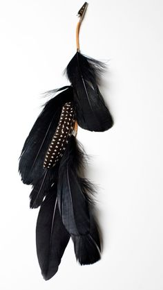 a bohemian feather clip . Black Swan, My Black, Shades Of Black, Back To Black, White Swan, Feather Hair Clips, Feather Jewelry, Black Feathers, Hair Feathers