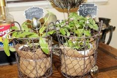 s 12 adorable plant markers from your junk drawer, gardening, repurposing upcycling, Take out those never been used tea infusers