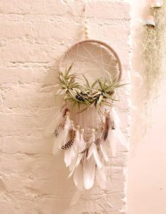 Dream Catcher Air Plants Holder Wall by RoseandVineShop - Diy Decoration Air Plants, Indoor Plants, Diy And Crafts, Kids Crafts, Decoration Plante, Boutique Deco, Plant Holders, Handmade Home Decor, Plant Decor