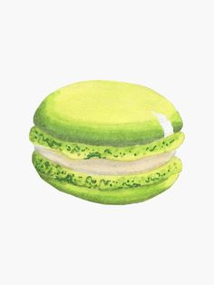 'Cute Green Macaroon Modern Sketch Style' Sticker by AdelaideMiette Best Macaron Recipe, Macaroons, Easy Drawings, Diy Art, Watercolor Art, Art Ideas, Sketch, Sticker, Green