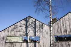 NATUR: Huset i Holmestrand ligger mellom to bjørker på den ene siden og en gruppe eiketrær på den andre. (Foto: Karen Gjermundrød)