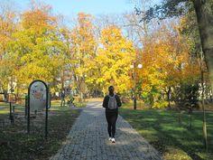 Szlak rozpoczyna się w Mrągowie przy Ekomarinie przy ul. Jaszczurczej Górze. Ale można go również rozpocząć w parku za urzędem miejskim.  www.it.mragowo.pl