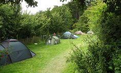 Het trekkersveld van camping Lange Paal op Vlieland.