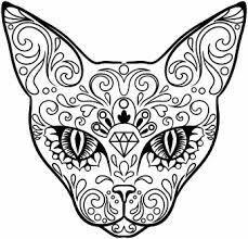Mandela cat face tattoo