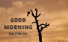 Good Morning Wishes Greeting Images For Whatsapp Free Download | SMS Wishes Poetry