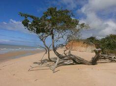 Praia do Calambrião, em Cumuruxatiba, Prado (BA)