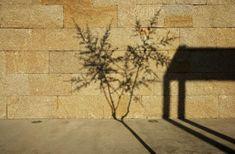Architettura di pietra naturale  Un muro a secco spesso si trascina come  serbatoio di calore dc84ef0e9140