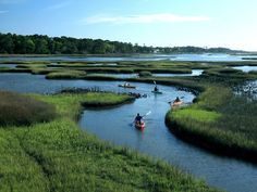 Kayaking through the tiny islands off the outer Banks of North Carolina.. so peaceful, surrounded by nature.