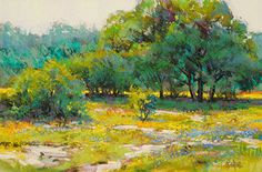 Robert Rohm - Texas Blue and Gold
