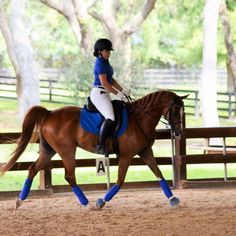ON HORSE NATION >> 20 FABULOUSLY color-coordinated horses and riders