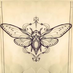 Cicada by Miss Juliet