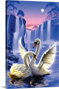 Steve Read Solid-Faced Canvas Print Wall Art Print entitled Swan Dreams, None Swan Wallpaper, Flower Phone Wallpaper, Peacock Wall Art, Peacock Painting, Beautiful Nature Wallpaper, Beautiful Birds, Beautiful Swan, Fantasy Kunst, Fantasy Art
