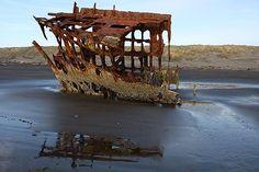 Shipwreck Skeletal Remains: Peter Iredale, N. Oregon Coast