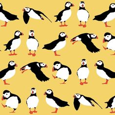 Puffin Bird Fabric - Just Puffins Aqua By Scrummy - Winter Puffin on Aqua Cotton Fabric By The Yard With Spoonflower Illustrations, Illustration Art, Puffins Bird, Fabric Birds, Patchwork Fabric, Yellow Fabric, Sea Birds, Cotton Twill Fabric, Custom Fabric