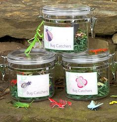 The Bug Hunt:Plastic bugs scattered about the garden are a playful version of a traditional Easter egg hunt. Send the little ones out with bug boxes (perfect party favors!) to capture the critters. After they've gathered them, see if they can identify the insects.