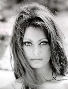 """Sophia Loren, considerada umas das maiores atrizes italianas de todos os tempos. Nasceu em 20 de setembro de 1934. Trabalhou com grandes diretores como Vittorio De Sica, Federico Fellini, Ettore Scola, Robert Altman e Lina Wertmüller. Em 1962 recebeu o Oscar de melhor atriz pelo filme """"Duas Mulheres"""", que também lhe rendeu o prêmio de melhor atriz no Festival de Cannes. Faz parte da lista das 50 maiores lendas do cinema, do American Film Institute."""