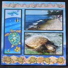 Hawaii - Turtle Beach Left - Scrapbook.com