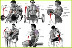 Get Ready To Bulk Up Your Biceps With Our 100 Bicep Curl Challenge - GymGuider.com Chest Workouts, Gym Workouts, Bulk Muscle, Muscle Food, Lifting Motivation, Fitness Motivation, Ab Workout With Weights, Weight Training Workouts, Training Tips